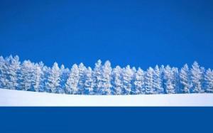 Winter Break - School CLOSED